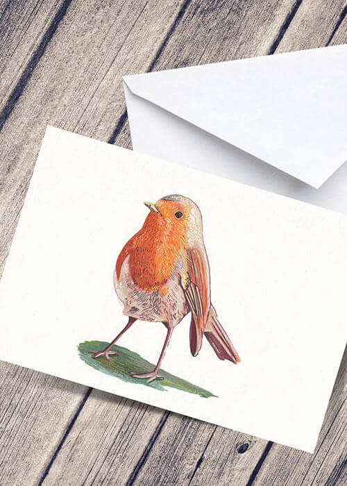 Buy the Festive Robin Greetings Card item